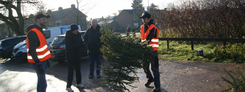 Inzameling kerstbomen succesvol verlopen